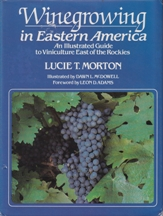 Winegrowing in Eastern America. Lucie T. Morton